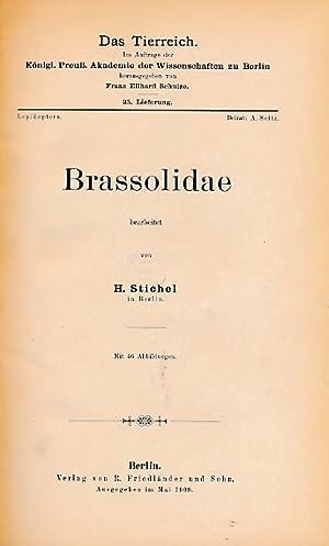 Brassolidae. Volume 25 in Das Tierreich Series: Stichel, H
