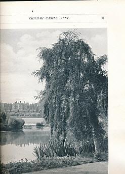 English Gardens: Tipping, H Avray