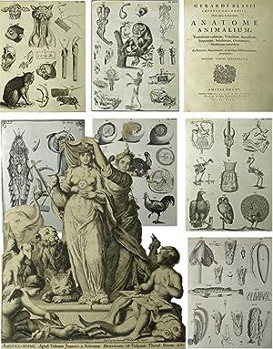 Anatome Animalium, Terrestrium Variorum, Volatilium, Aquatilium, Serpentum, Insectorum, Ovorumque, ...