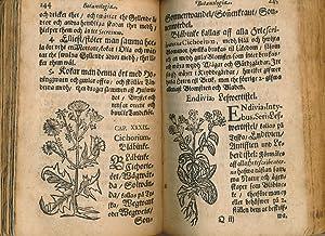 Serta Florea Svecana eller Swenske Örte-krantz [Swedish Herbal]: Palmberg, Johanne