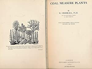 Coal Measure Plants: Crookhall, R