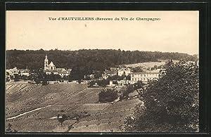 Carte postale Hautvillers, Vue générale