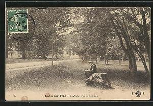 Carte postale Juvisy-sur-Orge, Le Parc, vue artistique