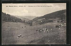 Carte postale Duerne, le panorama sur la