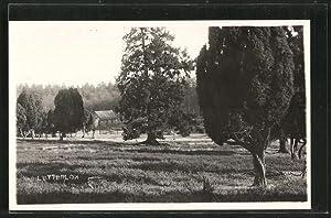 Ansichtskarte Lutterloh, Ortsansicht