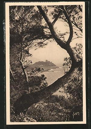 Carte postale Cap Ferrat, vu à travers