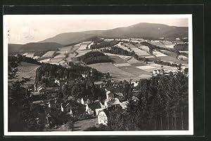 """Ansichtskarte Nieder-Lindewiese, Ortsansicht mit Kurhaus """"Zur Amerikanerin"""""""