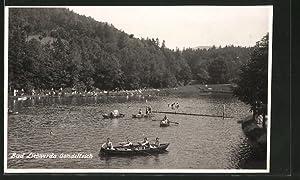 Ansichtskarte Bad Liebwerda / Lazne Libverda, Ruderboote