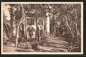 Carte postale Ile de Port-Cros, le manoir,