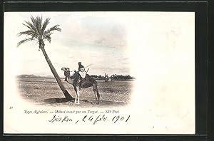 Ansichtskarte algerischer Mehari auf Kamel