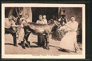 Ansichtskarte Chailley, En Batterie, Esel erhält ein