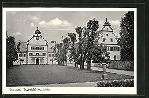 Ansichtskarte Darmstadt, Blick auf Jagdschloss Kranichstein