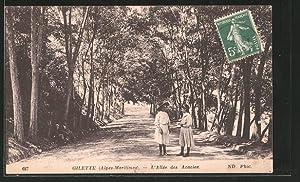 Carte postale Gilette, l'allée des Acacias