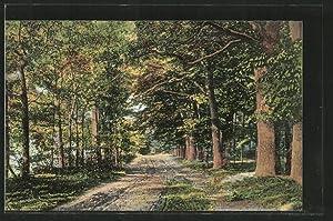 Ansichtskarte Rotenburg, Partie im Forsthof