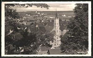 Ansichtskarte Mainburg, Gesamtansicht