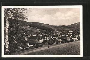 Ansichtskarte Nieder Lindewiese, Ortsansicht im Altvatergebirge