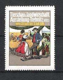 Reklamemarke Trebnitz, Tierschau und landwirtschaftliche Ausstellung 1914,