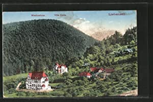 Ansichtskarte Bad Liebenzell, Missionshaus und Villa Lioba