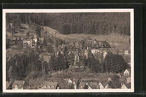 Ansichtskarte Bad Liebenzell, Missionshaus, Villa Lioba und