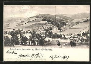 Ansichtskarte Nieder-Lindewiese, Blick auf die Schroth'sche Kuranstalt