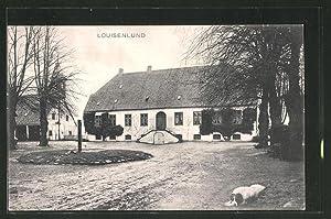 Ansichtskarte Güby, Gut Louisenlund