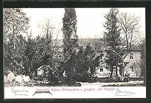 Ansichtskarte Wolfstal, Atzenroth's Reform- Erholungsheim und Jungborn