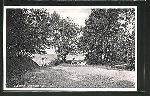 Ansichtskarte Greifenberg, Blick auf den See
