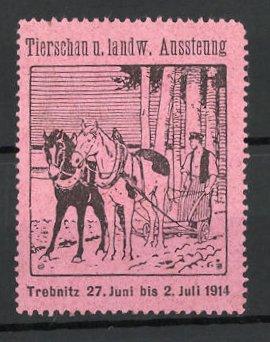 Reklamemarke Trebnitz, Tierschau und landwirtschaftliche Aussteung 1914,