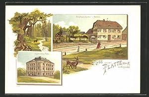 Lithographie Wiesbaden, Gasthaus Forsthof auf der Platte,