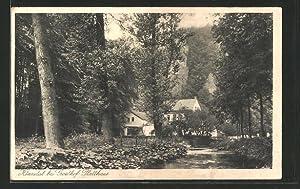 Ansichtskarte Hönnetal-Fröndenberg, Weg zum Gasthof Platthaus