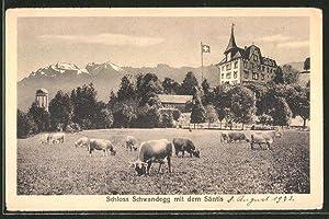 Ansichtskarte Menzingen, Schloss Schwandegg mit dem Säntis