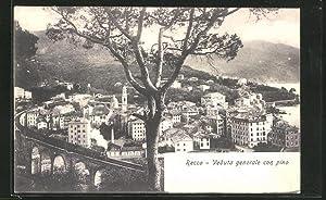 Cartolina Recco, Veduta generale con pino