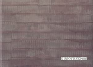 Marco Giannotti: Barro, David; Brito,