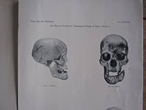 Contributions to the Craniology of the People of the Empire of India. Part I: The Hill Tribes of ...