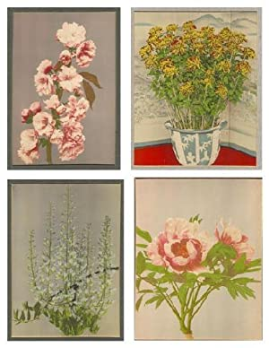 Flower Collotypes, Color, By K. Ogawa (4 Different)