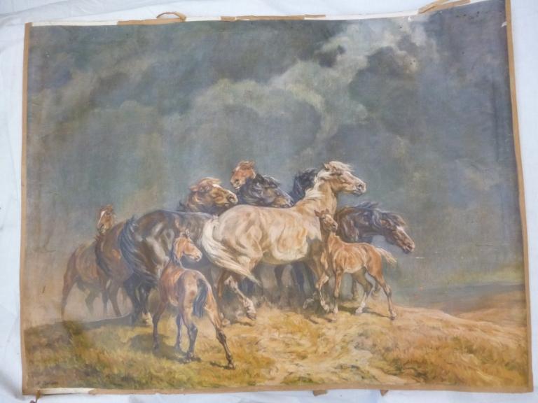 Posterplakat Kunstdruck Sturmgepeitscht Pferde Wildpferde Nach