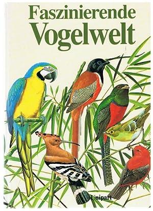 Faszinierende Vogelwelt: Rheinwald, Goetz