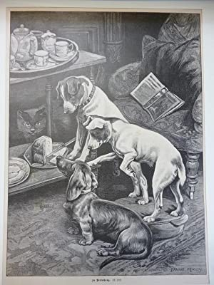 Orig. Holzstich - Hunde - In Versuchung.
