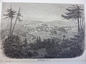 Orig. Holzstich - Bad Wildungen.