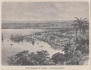 Orig. Holzstich - Port Durban in Natal.