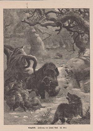 Orig. Holzstich: Eingestellt. Zeichnung von Joseph Wolf.