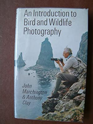 An Introduction to Bird and Wildlife Photography: Marchington, John and