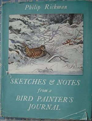 Sketches and Notes From a Bird Painter's Journal