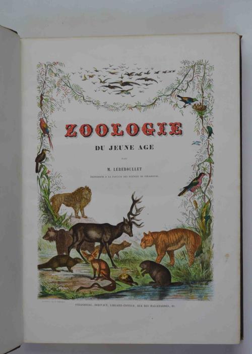 Zoologie du jeune âge. Histoire naturelle des animaux [auteur : Dominique Auguste LEREBOULLET, G. , ill.] [éditeur : Derivaux, Libraire-éditeur] [année : 1860]