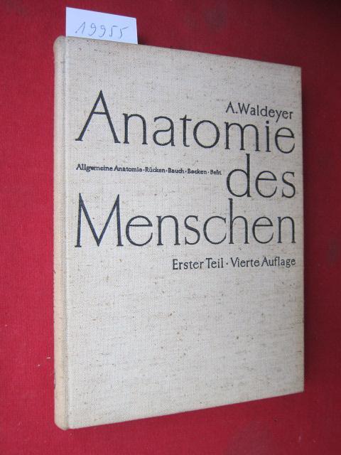 Anatomie des Menschen; Teil 1 : Allg. Anatomie. Rücken. Bauch ...