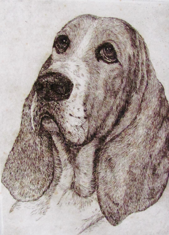 BASSET_HOUND_DOG_GEOFFREY_LASKO_As_New
