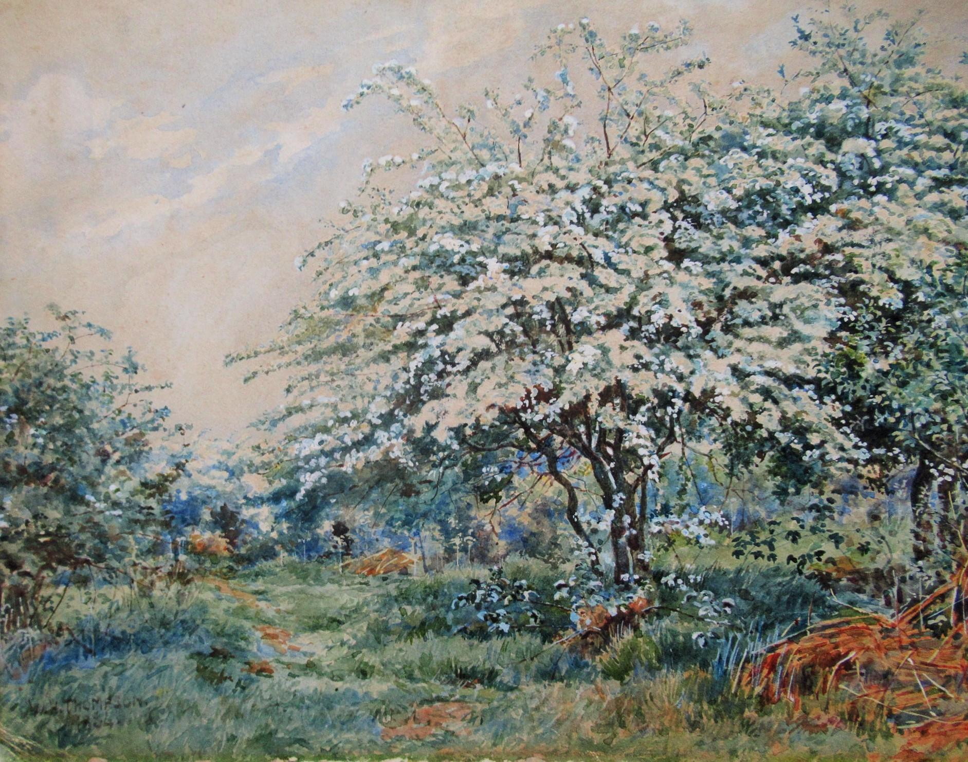 SPRING_BLOOM_-_ORIGINAL_WATERCOLOR_1884_W.H._THOMPSON_[Good]