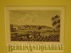 Ansicht von Potsdam. (Wohl von den Havelwiesen am Babelsberg, im Hintergrund Windmühlen).: ...
