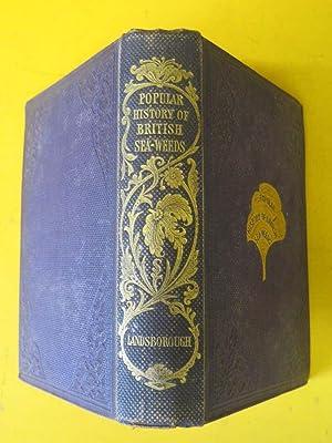 A Popular History of British Seaweeds: Rev. D. Landsborough