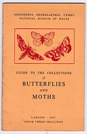 Guide to the Collections of Butterflies and: National Museum of
